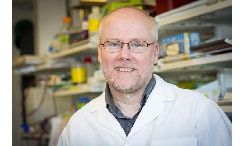 WSU researcher develops safer gene therapy