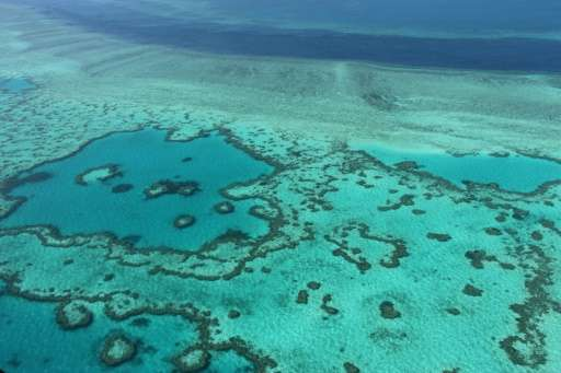 An aerial view of the Great Barrier Reef off the coast of the Whitsunday Islands, along the central coast of Queensland
