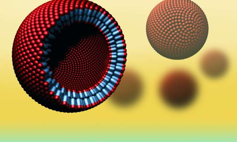 Physicists develop world's first artificial cell-like spheres from natural proteins