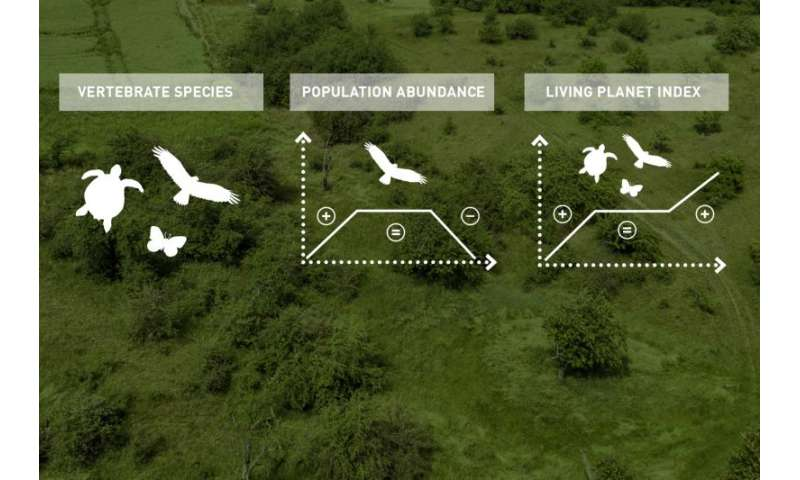 Researchers compare biodiversity trends with the stock market