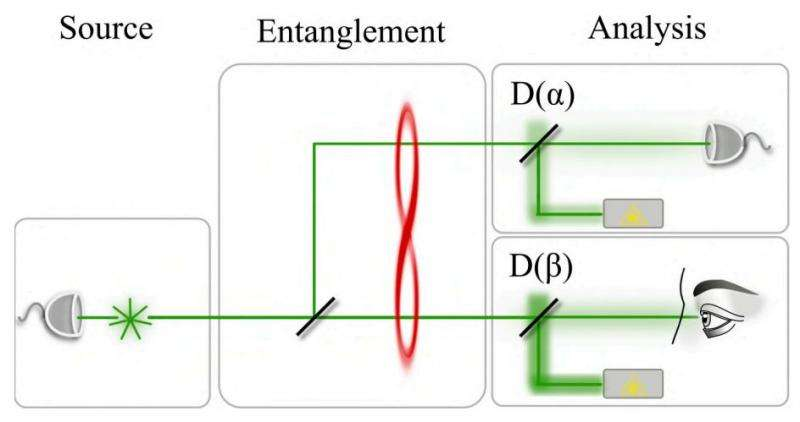 An idea for allowing the human eye to observe an instance of entanglement