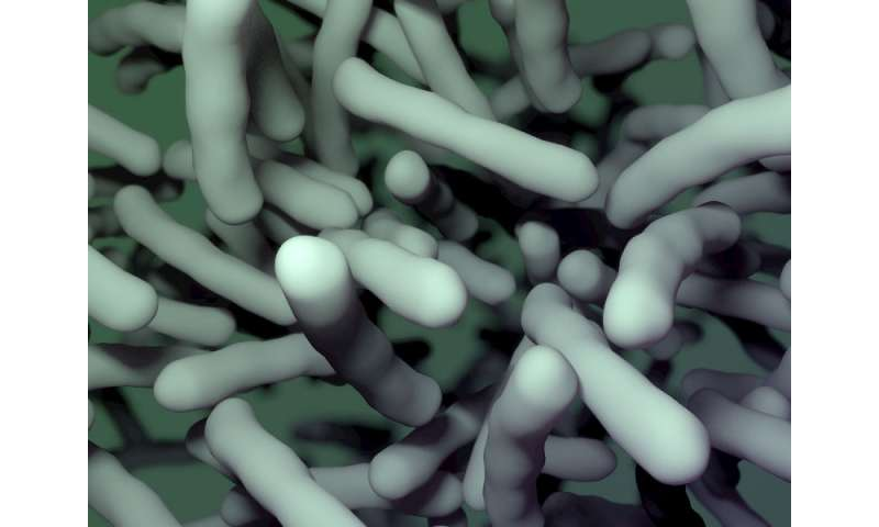 Two new molecules help beta-lactams kill drug resistant bacteria