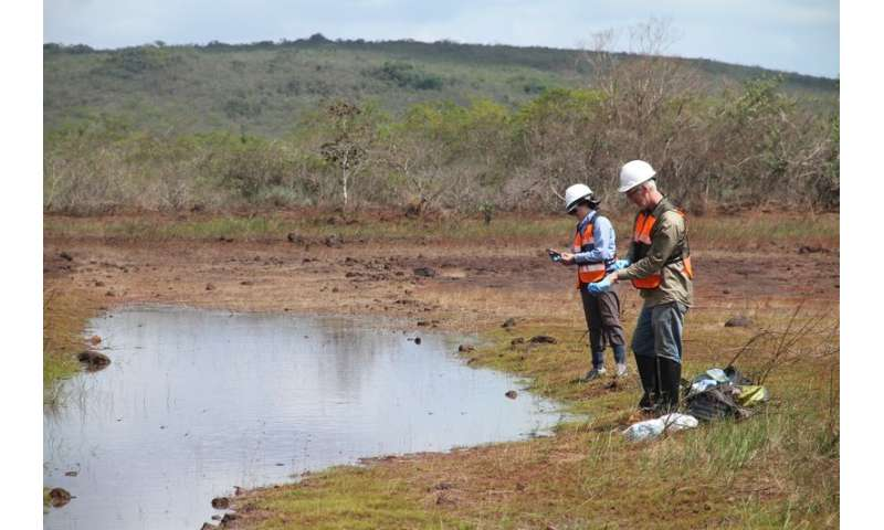 Tiny microbes could help mining remediation