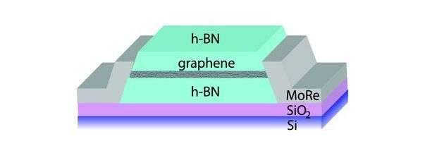 New type of Andreev process predicted whereby electron and hole states on opposite sample edges carry supercurrent