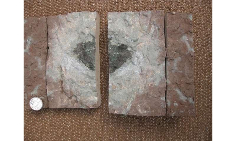 Unknown alien rock found in Swedish quarry