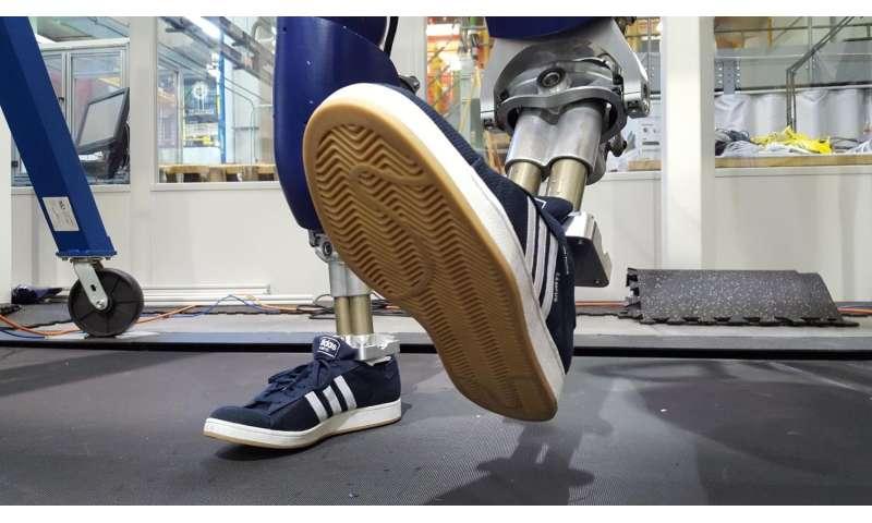 Robot earns its shoes, walks like a person