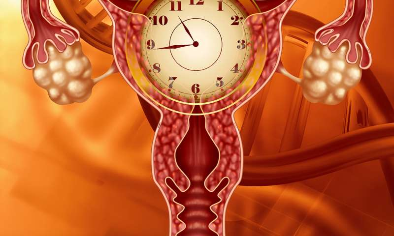 Hot news flash! Menopause, insomnia accelerate aging