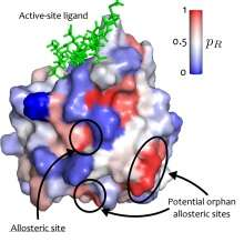 Mapping signal paths in proteins could reveal new direction for drug development