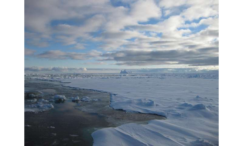 Freshening of Southern Ocean linked to moving sea ice