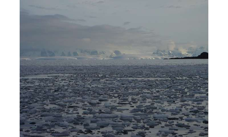 Antarctica is practically defined by ice: What happens when it melts?