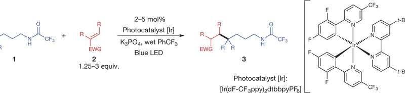 Carbon-carbon bond formation at selective aliphatic carbon sites