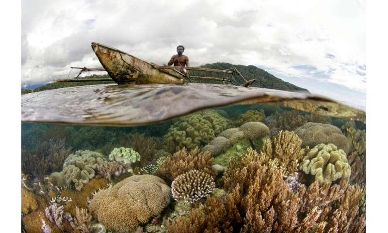 The 2016 Ocean Health Index shows no major declines — and few real improvements