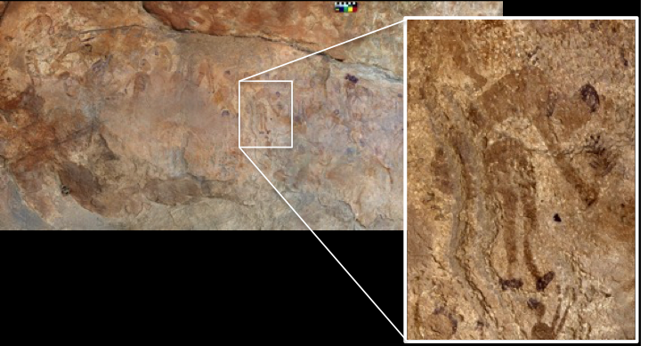 Earliest evidence discovered of plants cooked in ancient pottery