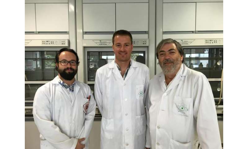 Researchers introduce metallic ions within a DNA molecule, which will have many uses in biotechnology and biomedicine