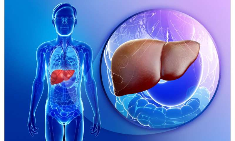 New approach to liver transplantation: Using a damaged liver to replace a dying liver