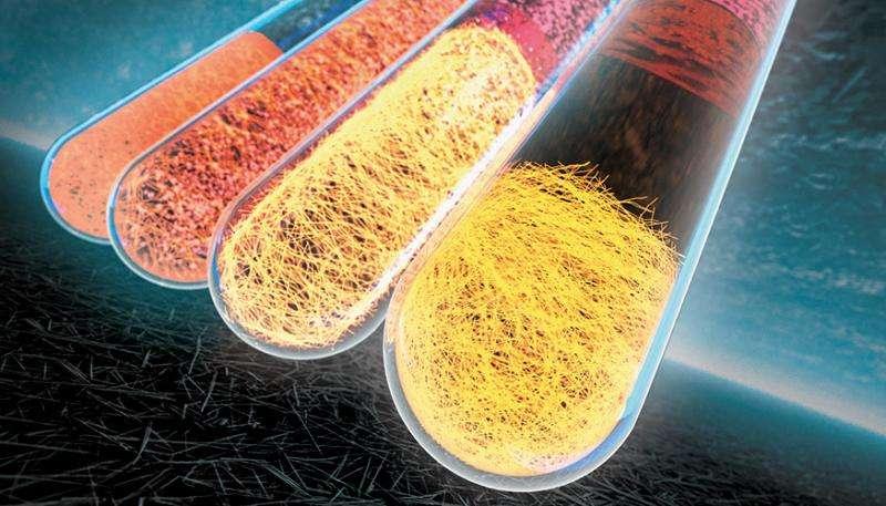 Scientists purify copper nanowires