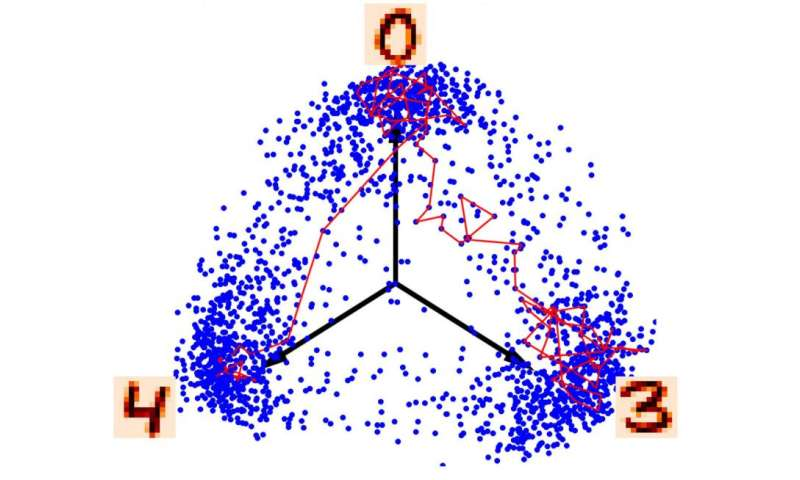 Researchers investigate how neurons sample probability distributions