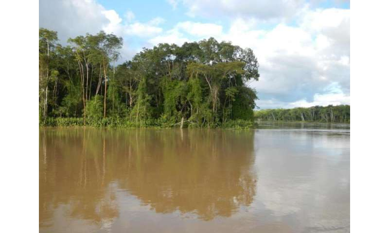 Researchers found unexpected biogeographical boundaries in Amazonia