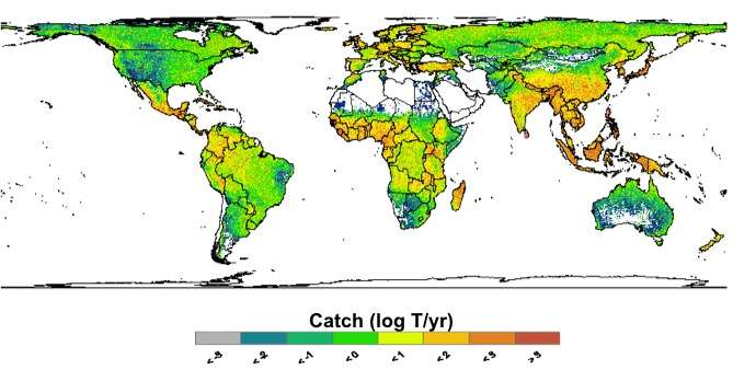 Report reveals a big dependence on freshwater fish for global food security