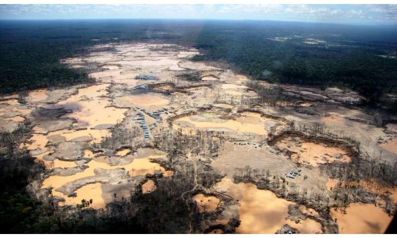 Conservation alliance to focus on Peruvian Amazon deforestation