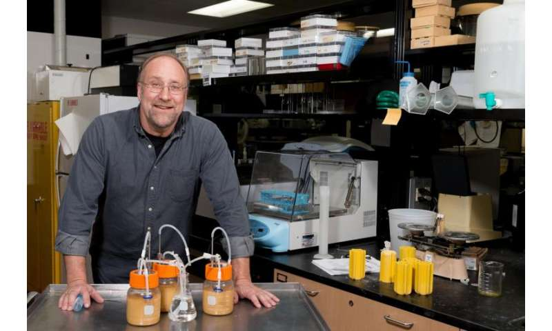 Food scientist aiding fuel ethanol with new engineered bacteria