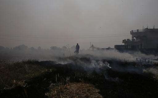 India's capital grapples with toxic winter air pollution