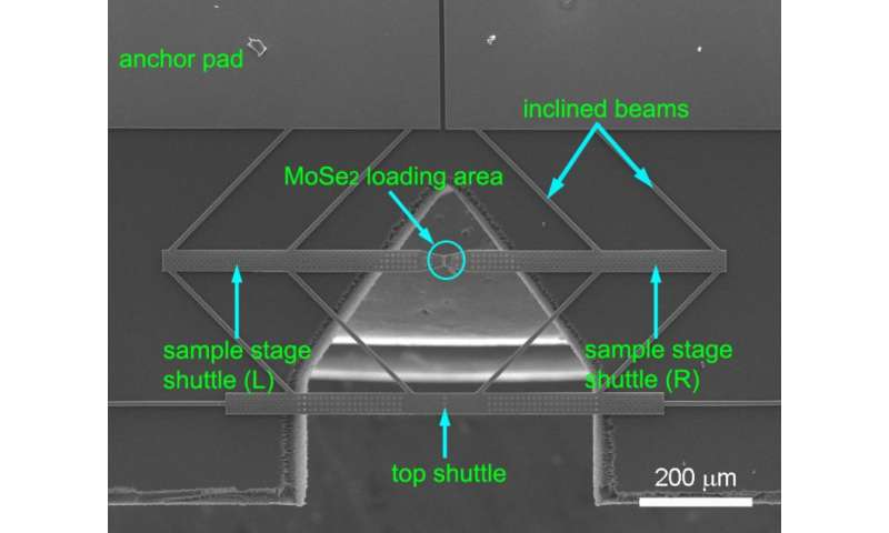 Researchers find molybdenum diselenide not as strong as they thought