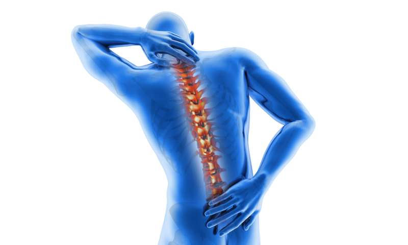 Researchers explore epigenetic influences of chronic pain