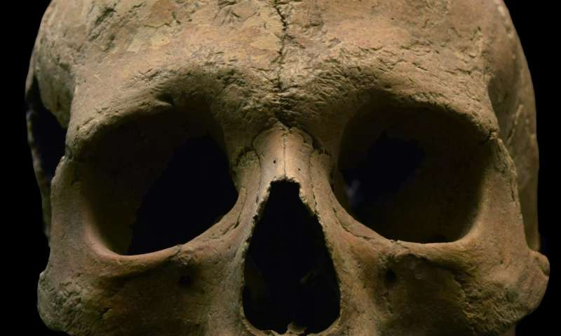 Researchers find overwhelming evidence of malaria's existence 2,000 years ago