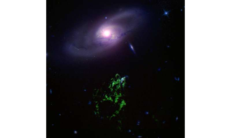 A black hole story told by a cosmic blob and bubble