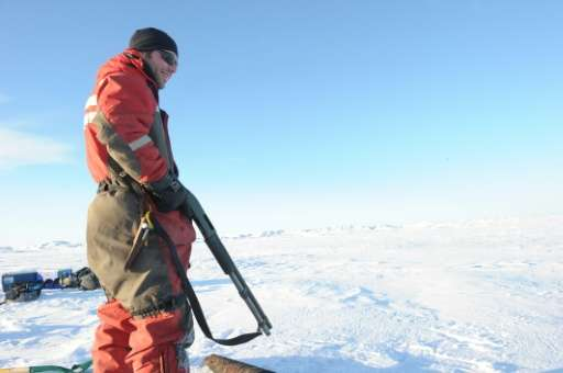 A Canadian Coast Guard carries shotgun to protect scientists from polar bears in the Canadian High Arctic