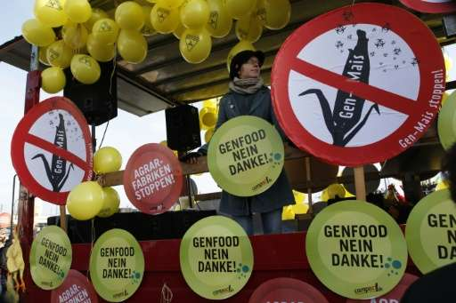 """A German protester stands on a vehicle decorated with signs reading """"Genetically modified food: No thanks"""" as farmers,"""