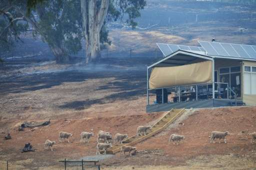 A house saved from an approaching fire near One Tree Hill in the Adelaide Hills, northeast of Adelaide on January 3, 2015