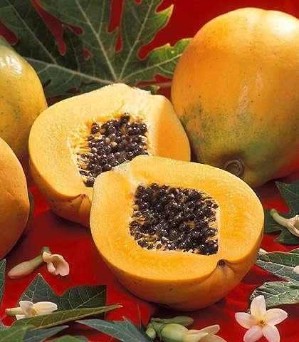 Algae enlisted to produce biofuel using discarded papayas
