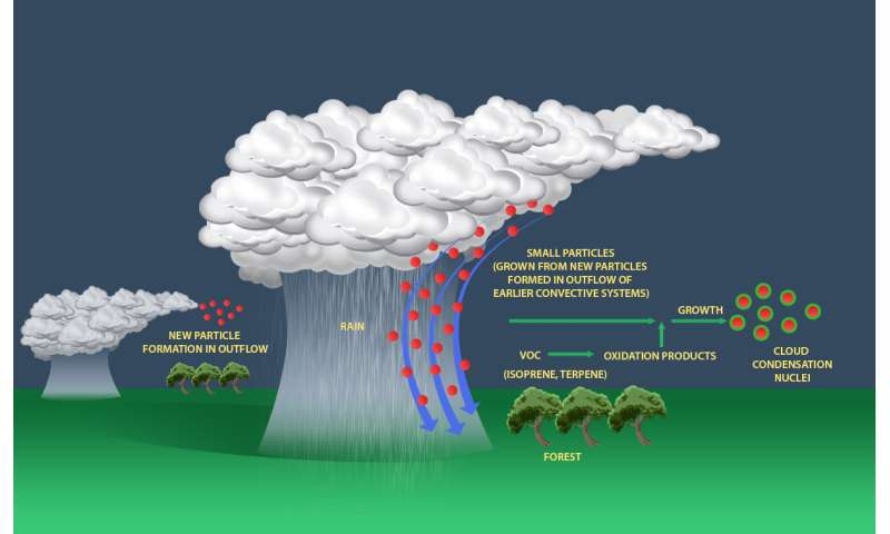 Amazon rainstorms transport atmospheric particles for cloud formation