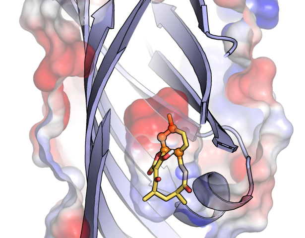 An enzyme enigma discovered in the abyss