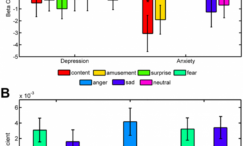 A neural code for emotion