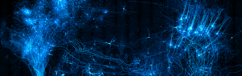 A new platform for brain-wide imaging and reconstruction of neurons