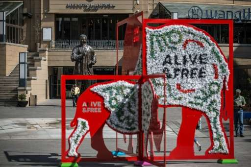 An installation showing a rhino and an elephant in Mandela Square as part of the CITES (Convention on International Trade in End