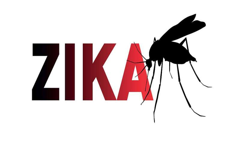 Another miami neighborhood now zika-free
