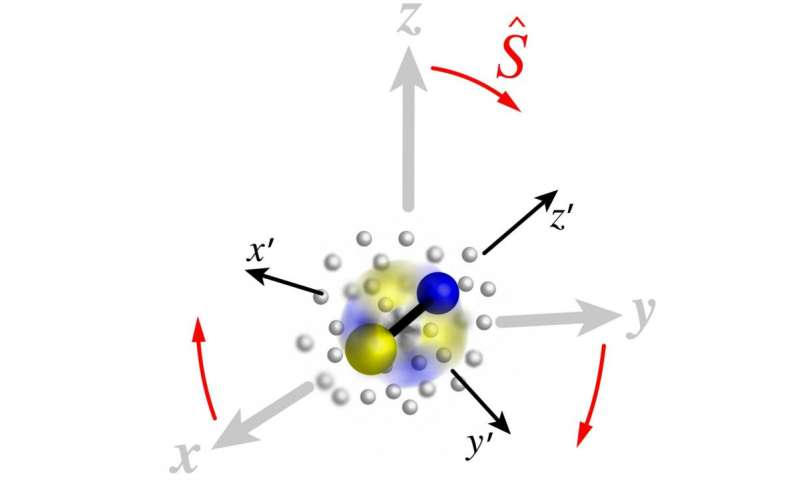 A novel canonical transformation provides insights into many-particle physics