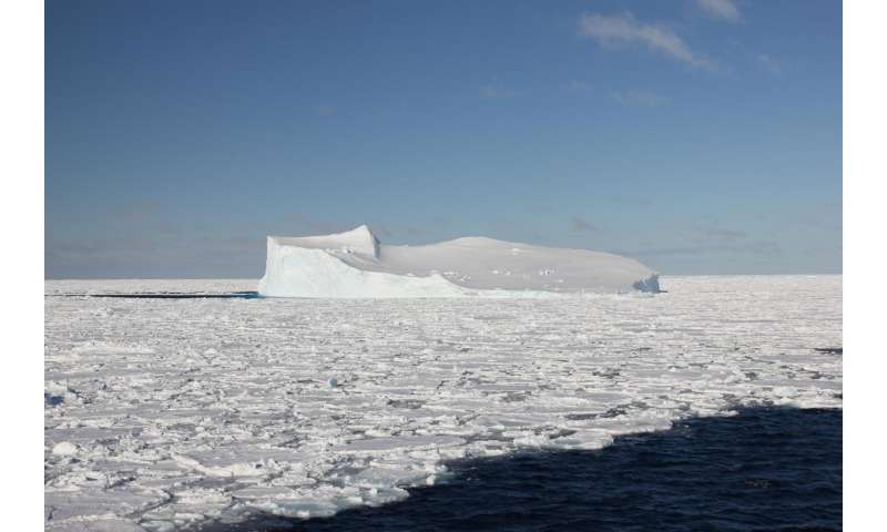 Antarctic sea ice may be a source of mercury in southern ocean fish and birds