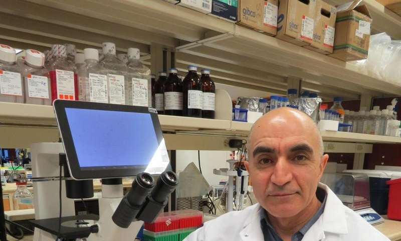 Anti-inflammatory drug may prevent rapid aging in people with HIV