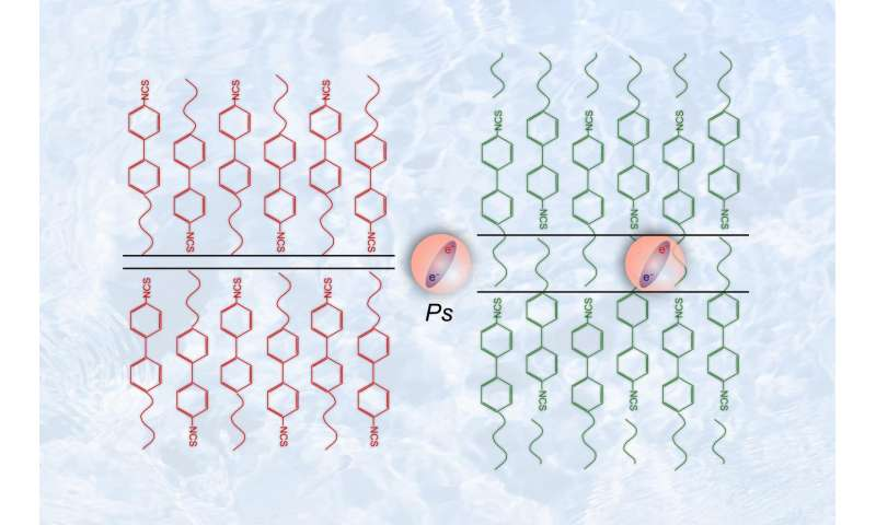 Antimatter helps to unveil the secrets of liquid crystals
