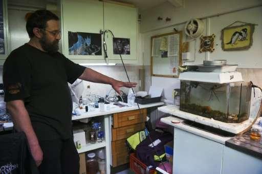 An Ukranian biologist points at a sea spider at Vernadsky Research Base, an Ukrainian Antarctic Station at Marina Point on Galin