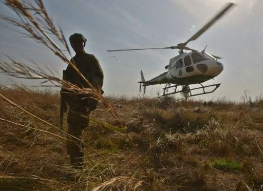 A park ranger stands in elephant grass during an anti-poaching operation in Garamba National Park in north-eastern Democratic Re