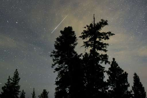 A Perseid meteor streaks across the sky above desert pine trees in the Spring Mountains National Recreation Area in Nevada, on A