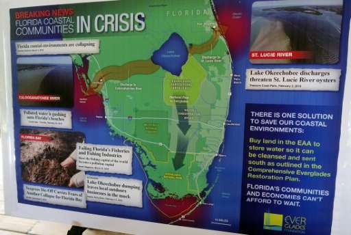 A poster by the Everglades Foundation shows the stages of seagrass die-off in the Florida Keys