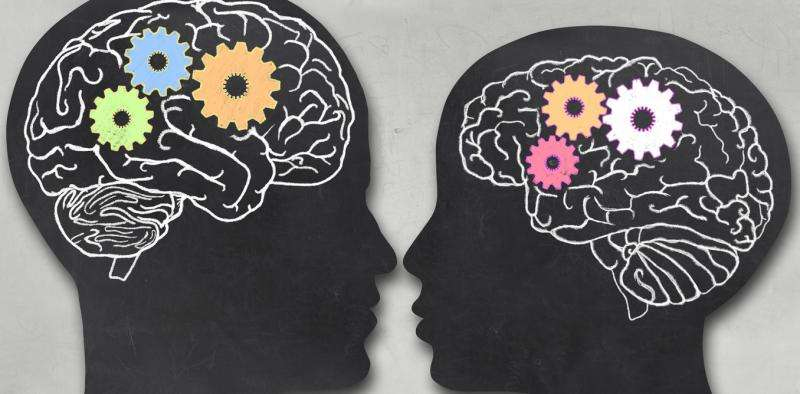 Are male and female brains really different?