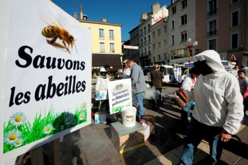 "A sign reading ""Let us save the bees"" during a demonstration against Cruiser, an insecticide which belongs to a subcla"